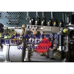 潍柴WD615燃油泵  潍柴发动机配件
