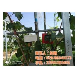 变电站驱鸟用什么办法_同凯电子(在线咨询)_变电站驱鸟