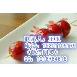 老北京冰糖葫芦加盟 技术培训