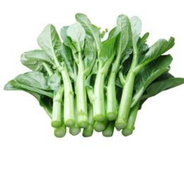 绿色农场菜心