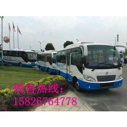 东风超龙驾校培训考试A1B1照教练车图片配置参数厂家报价