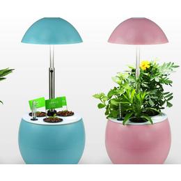 宁夏农用植物生长灯_同凯电子_宁夏农用植物生长灯怎么样