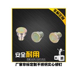 温州厂家加工订做平头圆柱销轴非标医疗机械设备用高精密定位销子