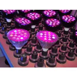 什么是激光育苗灯 激光育苗灯 同凯电子(查看)