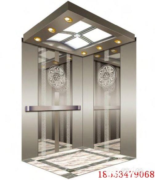 天津别墅别墅私人梯尺寸客运电梯标准住宅安装电梯图片绿梅图片