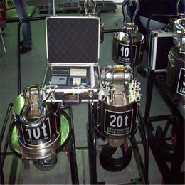 广东阳江可称300kg-10t直视吊秤厂家电话