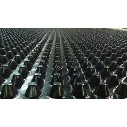 排水板批发 卷材排版 蓄排水板