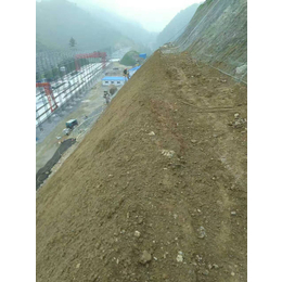 内蒙古生态修复土壤改良绿化保水剂粘合剂厂家销售