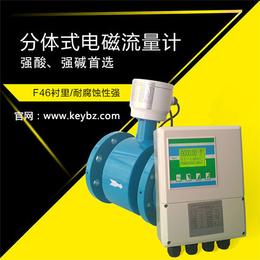 厂家直销防腐污水分体式智能电磁流量计上海佰质仪器仪表有限公司