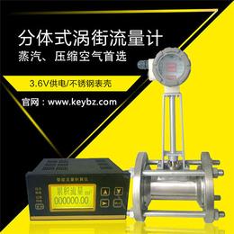 厂家直销分体式蒸汽涡街流量计上海佰质仪器仪表有限公司