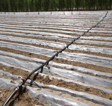 我國節水灌溉技術被大力推廣