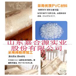 嘉合源JHY-211厂家生产环保购物袋 礼品袋 档案袋流延膜