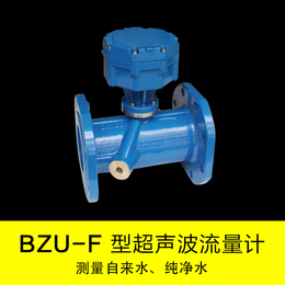 厂家直销BZU-L超声波流量计工作原理DN50铸钢材质