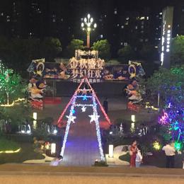 碧桂园灯光美食音乐节   大胜文化缩略图