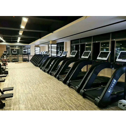 供应厂家直销奥信德AXD-6800健身房商用电动超静音跑步机