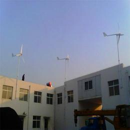 厂家直销1000瓦风光互补低转速离网小型绿色健康
