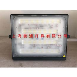 飞利浦明晖LED投光灯BVP171 30W