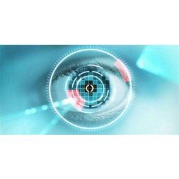 【虹娘科技】,北京虹膜锁供应商 ,北京虹膜锁