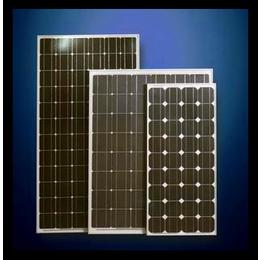 光伏板,振鑫焱上门回收光伏板(图),单晶硅光伏板