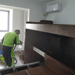 新房装修除甲醛缩略图