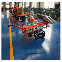 上海工厂出口工程高效率日韩工艺林业搬运车山区物料运输车直供缩略图