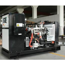甘肃75kw千瓦多燃料燃气发电机 LNG天然气内燃发电机组