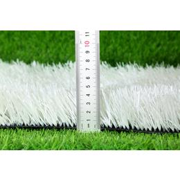 河北人造草坪厂家直销丨标准足球场大小丨内蒙古人造草坪厂家