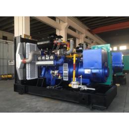 自贡200kw千瓦双余热回收燃气发电机组 生猪养殖场专用