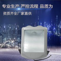 隆业供应 9700防眩通路灯应急防眩通路灯厂家直销