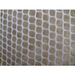 佛山厂家供应阻燃塑料网 灯箱阻燃网 耐腐蚀网 塑料平网 胶网 缩略图