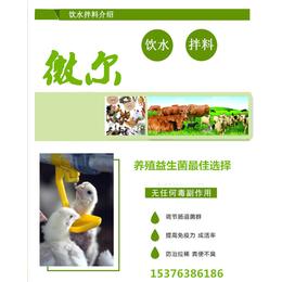 禽用双层包被益生菌厂家供应蛋鸡微生态