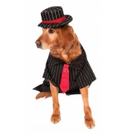 宠物用品加工厂宠物礼品厂家宠物赠品定做聚聪帽厂