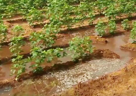 節水灌溉方式及其優缺點