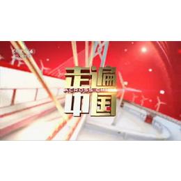 在CCTV-4央视4套晚间22点投放广告栏目有哪些价格是多少