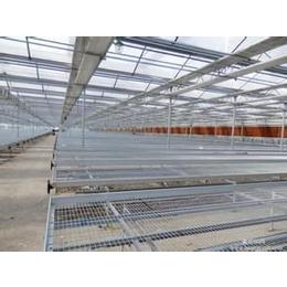 供应移动苗床-镀锌网片-品种多规格全-河北安平