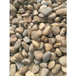 鹅卵石盆景填充材料鹅卵石24小时在线报价价钱