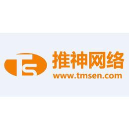 seo网站优化公司|推神网络|荔湾区seo网站