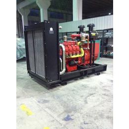 禽畜场用300kw热电肥联产燃气发电机组 配华柴道依茨发动机