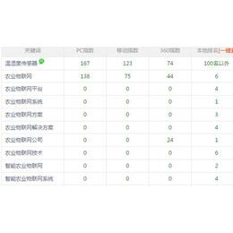 虎门SEO优化公司、商恩SEO公司、清溪镇SEO优化公司