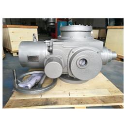 扬修电力阀门电动执行器F-DZW250-ZTD10