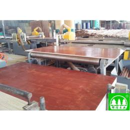 广西建筑模板 广西工程夹板 广西胶合板企业