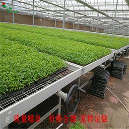 徐州哪里有做大棚苗床系统的