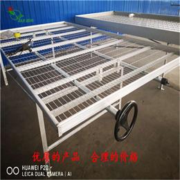 徐州移动苗床网生产加工-标准规格尺寸