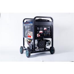 便携式300A氩弧焊发电电焊机