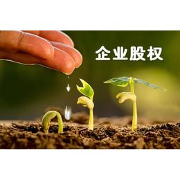 深圳找大状企业法律顾问企业股权通免费法律咨询