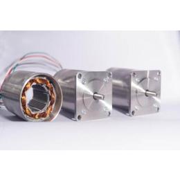 真空耐低温步进电机 耐环境温度-200-+40度可选