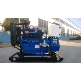 南充15kw千瓦小功率燃气发电机组价格 无刷免维护气体发电机