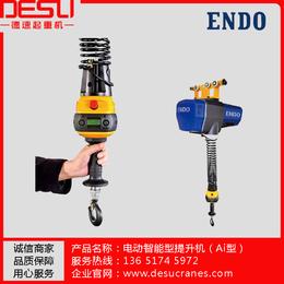 供应ENDO品牌150kg无极变速助力智能提升机