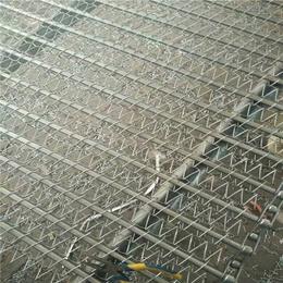 宁津悦达链网(图),316乙型网带,龙岩市 乙型网带