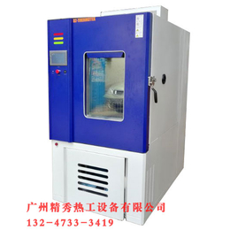 专业供应高低温交变湿热试验箱 非标准定做 厂家直销